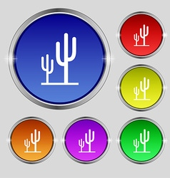 Cactus icon sign round symbol on bright colourful vector