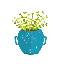 Green indoor leafy plant in pot vector image vector image