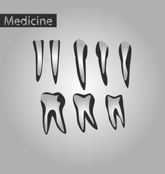 Black and white style icon of tooth vector