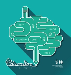 Education infographic flat linear education outlin vector