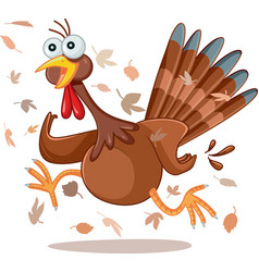 Funny turkey running cartoon vector
