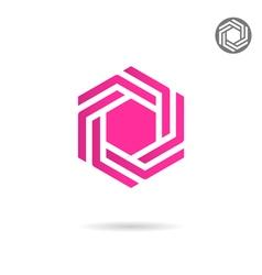 Hexagonal design element vector image vector image