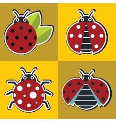 Ladybug icons with shadow in flat style vector image vector image