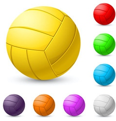 multicolored volleyball realiste on white vector image