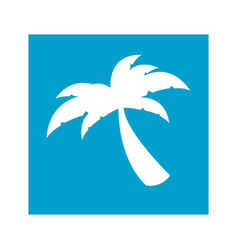 blue square frame with palm tree icon vector image