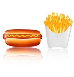 hotdogr and french fries vector image vector image