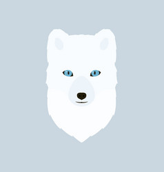 portrait of the arctic fox vector image
