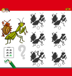 Shadow activity game with bug characters vector