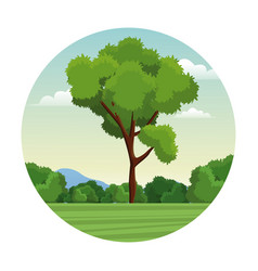 Tree bushes forest landscape stamp vector