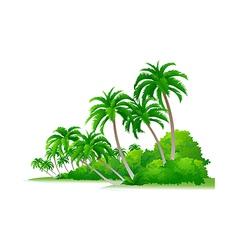 Icon palm tree and bush vector