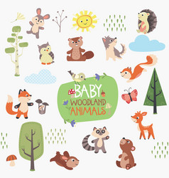 baby woodland animals design set vector image