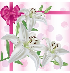 Greeting or invitation card with flower lily vector
