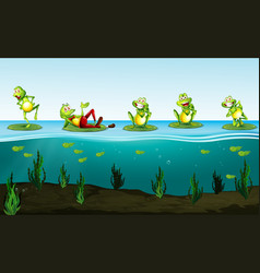 five green frogs in the pond vector image