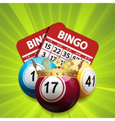 Bingo king and cards vector