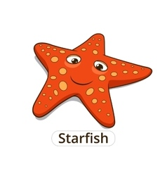 Starfish sea fish cartoon vector