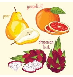 Fresh fruit mix isolated vector