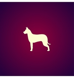Dog icon modern design flat style vector
