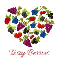 Berries fruits in shape of heart vector