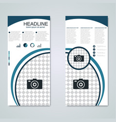 modern roll-up business banner template vector image
