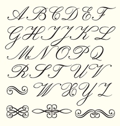 script alphabet vector image vector image