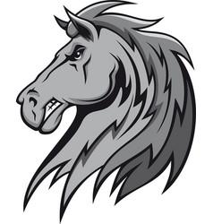 wild stallion vector image vector image