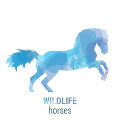 Wildlife banner - horses vector
