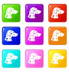 Dalmatians dog icons 9 set vector
