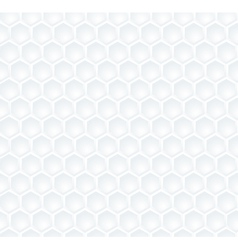 Seamless abstract white hexagon pattern vector image vector image