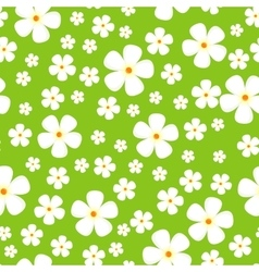Seamless pattern with meadow alpic flowers vector