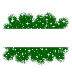 Spruce branches pattern vector
