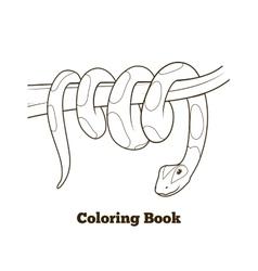 Boa cartoon coloring book vector