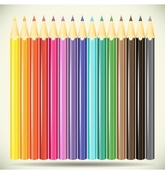 Collection of pencils on white background vector image vector image