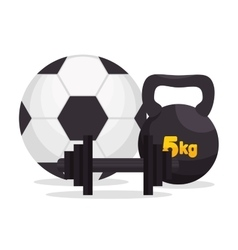 Sport gym ball barbell kettlebell icons vector