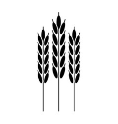 harvesting wheat ears pictogram vector image vector image