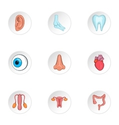 Structure of body icons set cartoon style vector