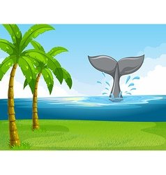 Whale swimming in the ocean vector