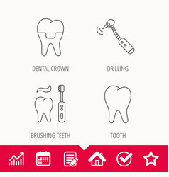 Brushing teeth tooth and dental crown icons vector