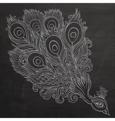 Decorative ornamental peacock chalkboard vector