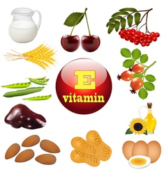 vitamin E the origin vector image