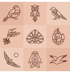 Birds line icons vector image vector image