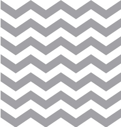 Gray and White Chevron Pattern vector image