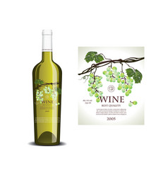 Conceptual transparent label for white wine vector