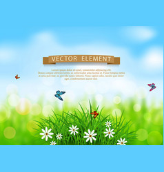 Green grass with white flowers vector