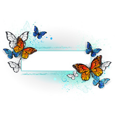 Rectangular banner with butterflies monarchs vector