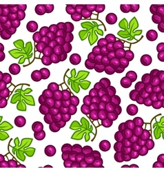 Seamless pattern with stylized fresh ripe grapes vector