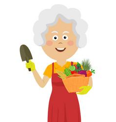 cute elderly gardening woman with wicker basket vector image
