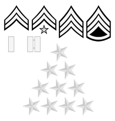 US police insignia vector image