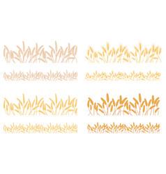 Strips waving ears of cereals plants vector