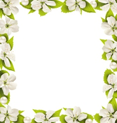 Cherry flowers with pearl beads like frame on vector