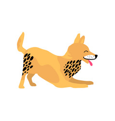playful dog with tongue on vector image